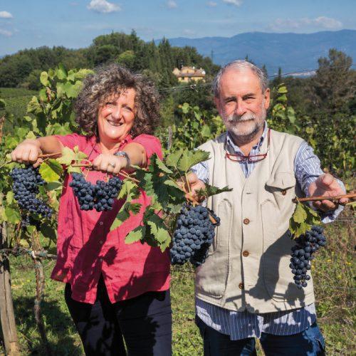 La carica dei vitigni tradizionali in Toscana