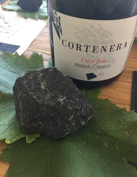 Slow Wine Scouting – Cortenera (Veneto)
