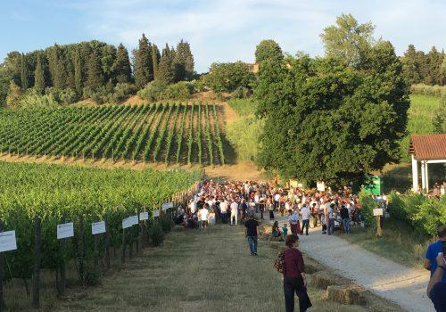 Lucca Biodinamica in festa. Vino e cibo per festeggiare l'agricoltura biodinamica e il solstizio d'estate