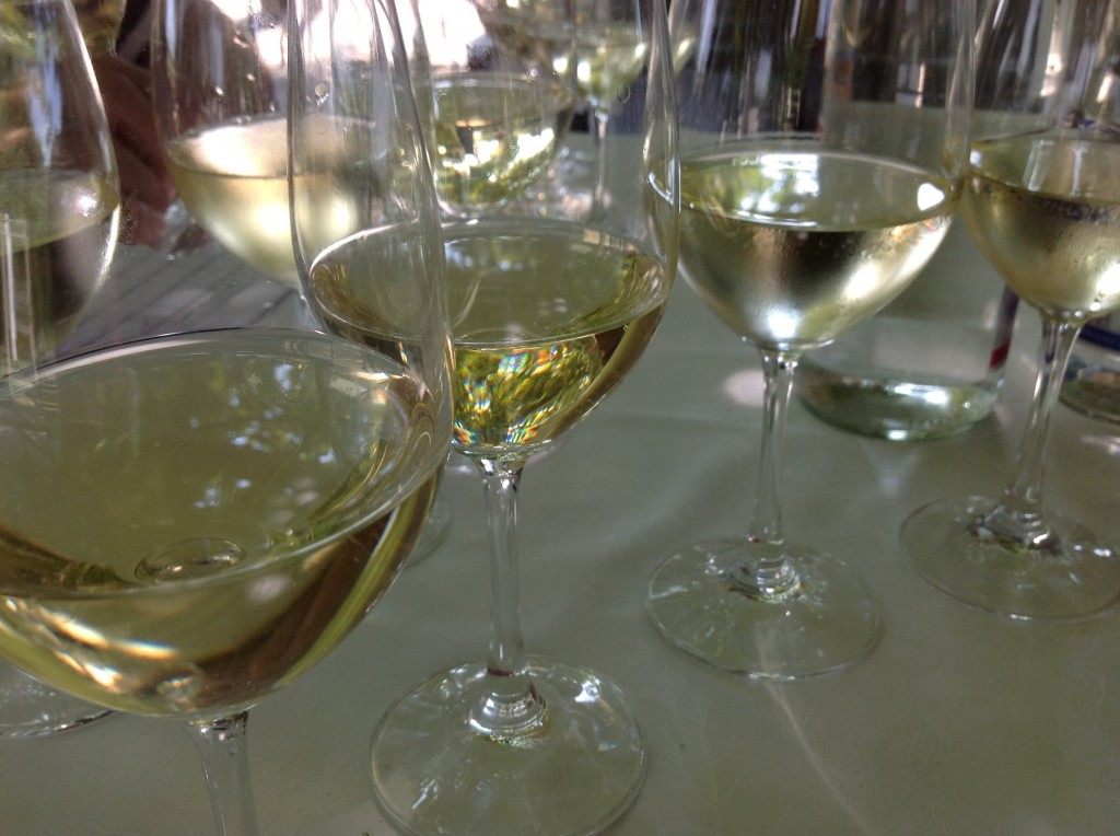 Risultati immagini per vini bianchi veneti