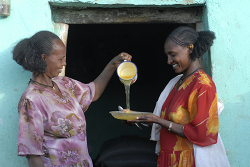 I mieli etiopi per ricostruire l'Emilia