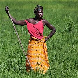 Sicurezza alimentare in Africa: alleanza o attentato?