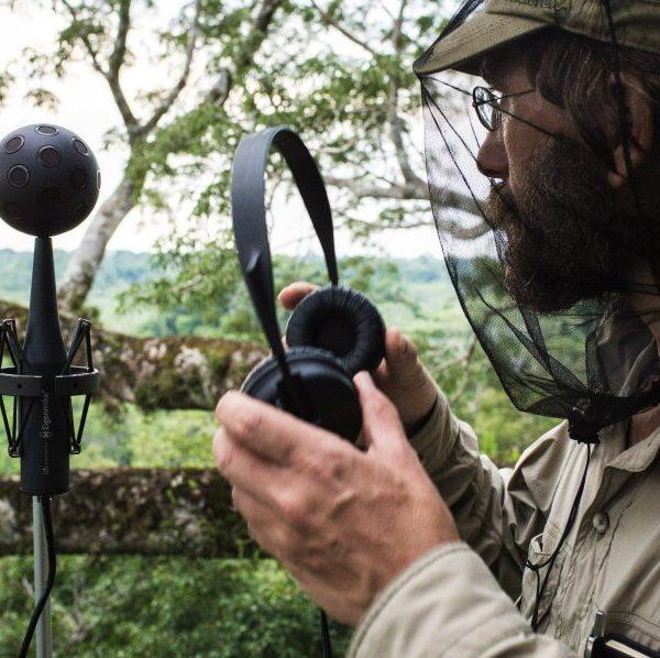 I suoni delle foreste inesplorate