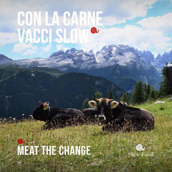 Quanto costa (davvero) la carne economica? Diffidate dai prezzi bassi!