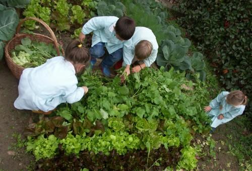 Prepariamoci al futuro: la nuova ristorazione scolastica targata Slow Food