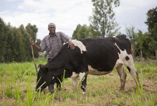 Land grabbing in Senegal: il caso Senhuile