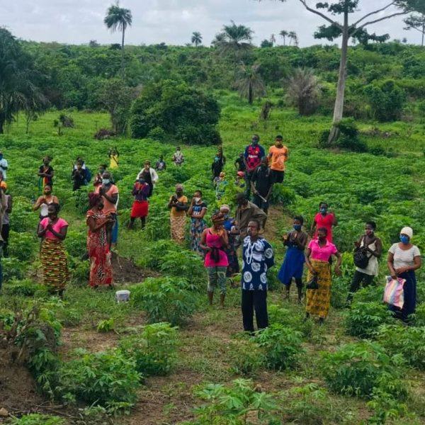 Sierra Leone: le conseguenze del Covid-19 oltre la crisi sanitaria