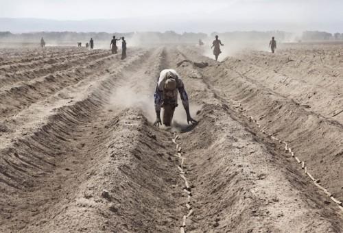 Il land grabbing priva i piccoli produttori locali dei loro mezzi di sussistenza