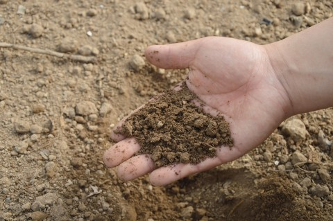 soil-766281_1280