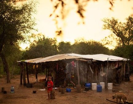 Paraguay: dove gli Ayoreo resistono al land grabbing