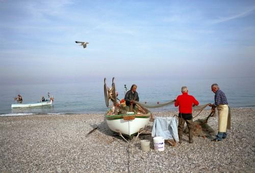 Dal mare alla tavola con il Fishbox!