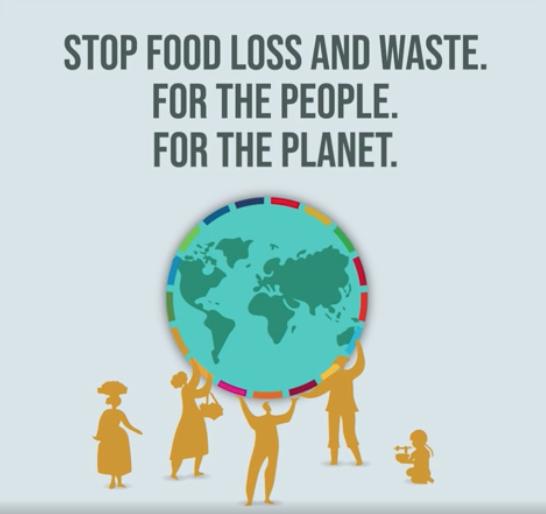 Giornata internazionale della consapevolezza della perdita e dello spreco alimentare. Fao: «Non c'è più spazio per lo spreco»