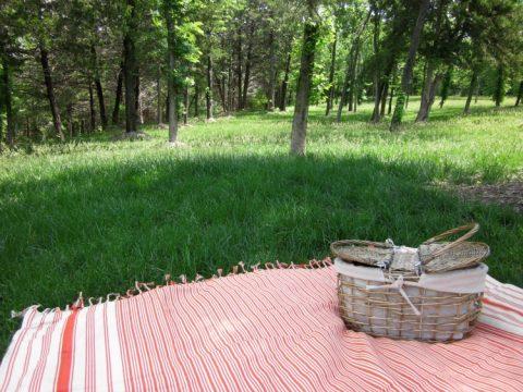 picnic-blanket-11