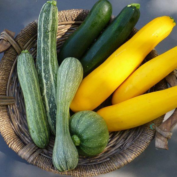 Acquistare le zucchine solo in estate non è soltanto questione di sostenibilità