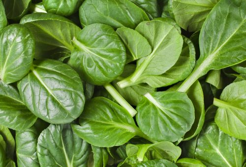 Ti porto nell'orto: tempo di spinaci, per una salute di ferro