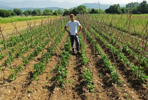 Matteo e i fagioli di Paganica. Come dai campi è rinata la vita dopo il terremoto