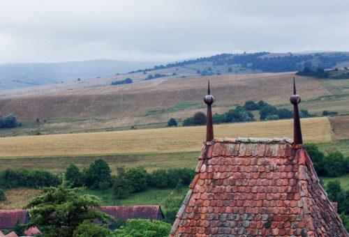Land grabbing in Europa: ecco chi specula sui contadini