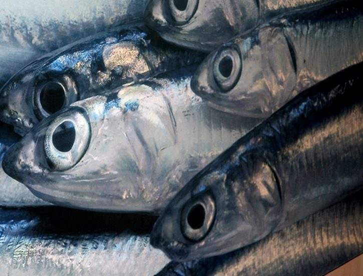 Al Mercato Del Pesce Quattro Regole Da Seguire Negli Acquisti