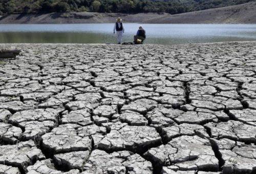 Terra di nessuno. L'agricoltura intensiva ha inaridito un terzo del suolo fertile