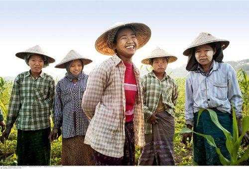 Cina, quando la ricostruzione rurale incontra Slow Food