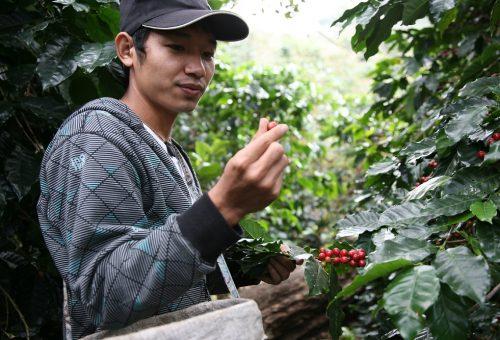 «L'agroecologia ci protegge dal clima che cambia»