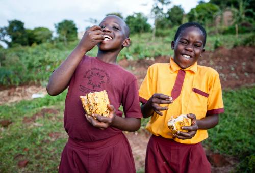 Spreco, nelle pattumiere occidentali c'è tanto cibo quanto nei campi africani