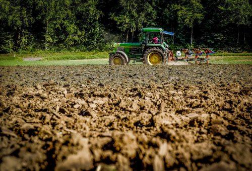 Tornano i voucher per l'agricoltura