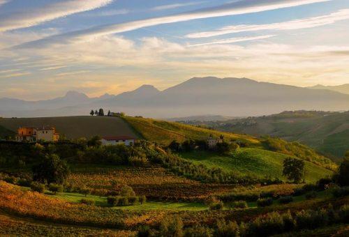 L'agricoltura delle aree terremotate rinasce al Mercato della Terra