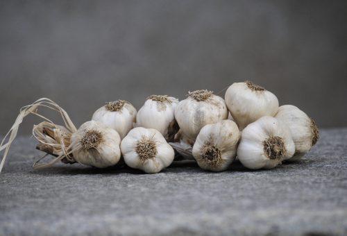 La rivincita dell'aglio italiano