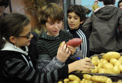 La scuola baluardo contro la cultura fast food