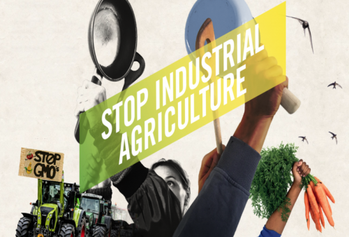 European Days of Action: la buona agricoltura passa all'azione!