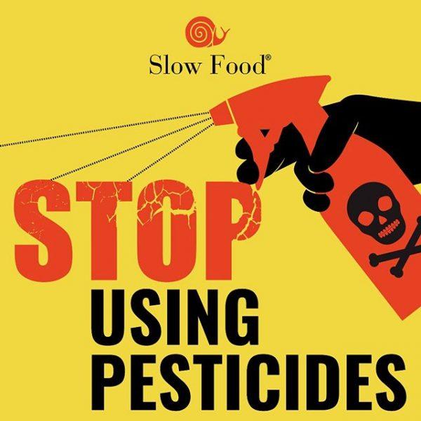 Possiamo dire no ai pesticidi, ecco le alternative della Pesticide Action Week