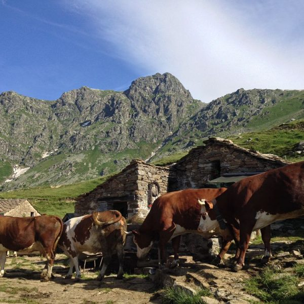 Slow Food Travel presenta le Montagne Biellesi