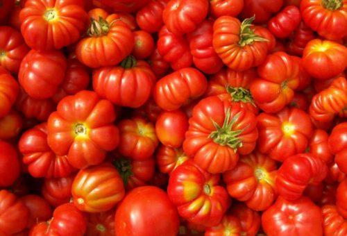 È il momento dei pomodori. Scatenatevi con bruschette e insalate!