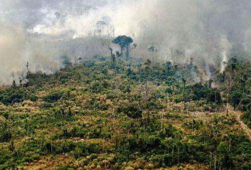 Perché l'Amazzonia riguarda ognuno di noi