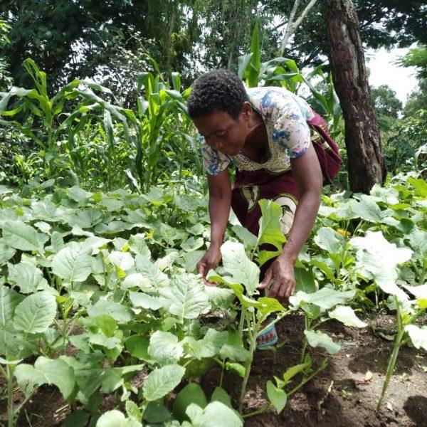 «Un orto Slow Food è molto di più che la promessa di un pasto nutriente»