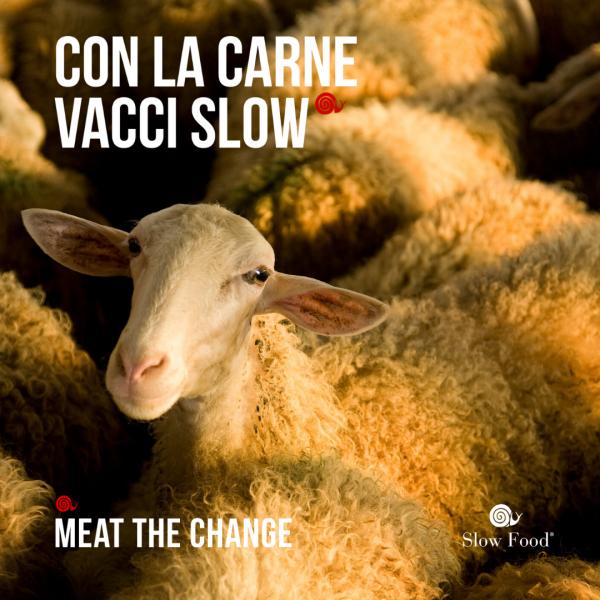 """""""Contiene antibiotici"""": come sono e come vorremmo fossero le etichette della carne"""