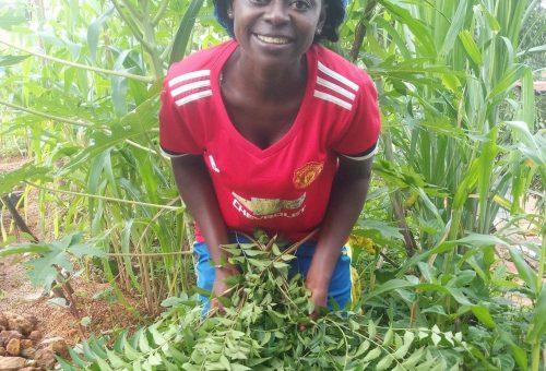 Le storie che celebrano i 30 anni di Slow Food: una Comunità per il futuro della Sierra Leone