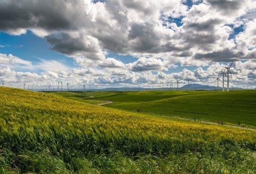 Biodiversità e ambiente: è finito il tempo degli slogan