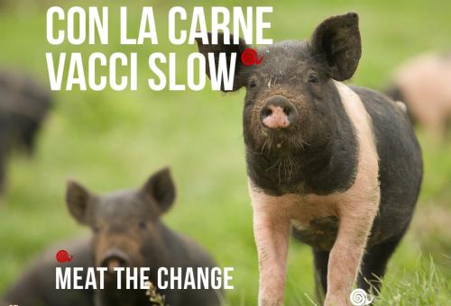 L'allevamento che Slow Food vorrebbe: partiamo dall'ABCD