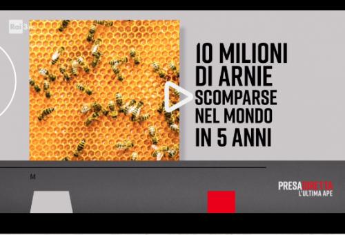«L'ultima ape». In gioco c'è il futuro della nostra alimentazione