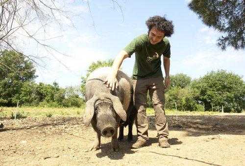 Quando l'allevamento rispetta l'ambiente e gli animali: Jacopo Goracci e la Tenuta di Paganico