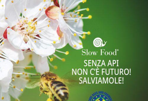 """Che aiuto può dare l'iniziativa dei cittadini europei """"Save Bees and Farmers""""?"""