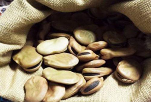Meatless Monday presenta le ricette della tradizione: dalla Sicilia, il macco di fave