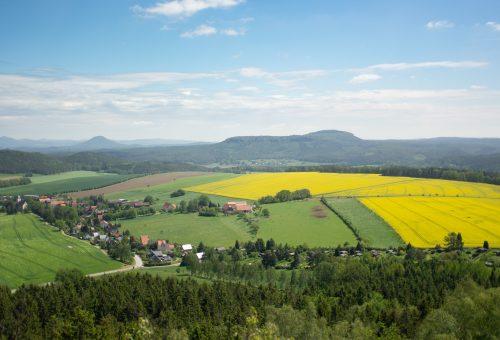 La società civile all'Europa: non si usi il Covid-19 per rinviare le risposte necessarie all'agricoltura