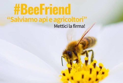 #BeeFriend: 10 piccole azioni per salvare le api